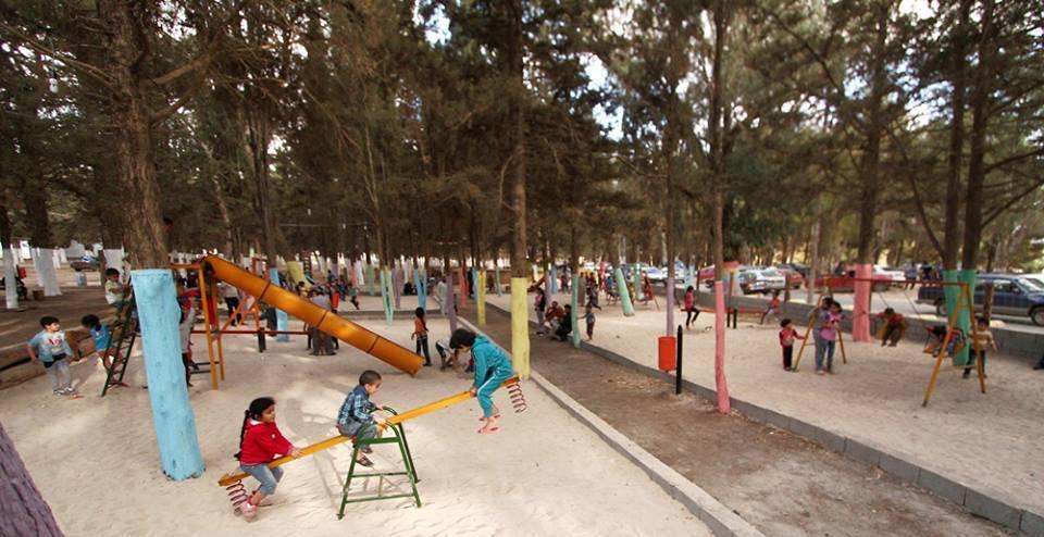 تحويل جزء مهمل من غابة الكشاب لمتنزه عائلي بمدينة شحات