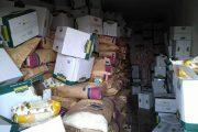 القوات المسلحة تعثر على مخزن للمواد الغذائية بمحور قنفودة