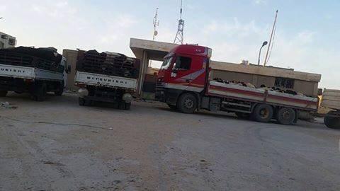 مسؤول الغرفة التجارية الليبية المصرية: ألفا رأس من المواشي تهرب يوميا إلى مصر