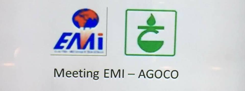 شركة الخليج تجتمع مع شركة AMI الفرنسية لتركيب توربينات غازية بحقل السرير