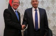 كوبلر: هناك توافق يجري حالياً حول كيفية قبول الاتفاق السياسي الليبي