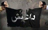 نزيف داعش بلا رجعة حتى الموت المذل