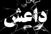 تعاون دولي وعزيمة موحدة للقضاء على تنظيم داعش الإرهابي